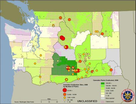 Map of Outdoor Marijuana Grow Sites in Wahington State - 2008