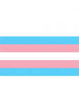 Photo of a trans pride flag linking to a Q&A document on health insurance and transgender care