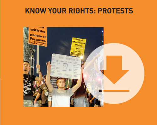 Download our know your rights guide to protests